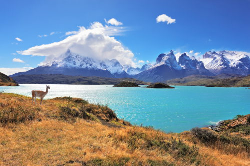 Patagonia Highlights: Chile and Argentina