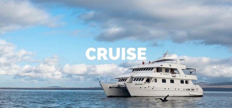 Cruise Holidays in South America