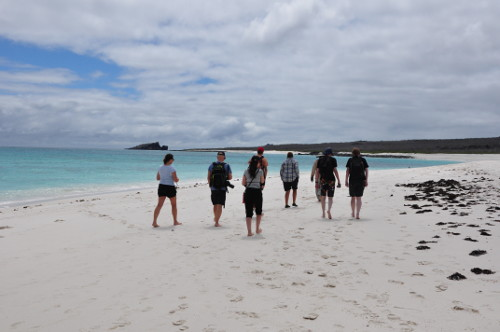 Galapagos Beach Walk