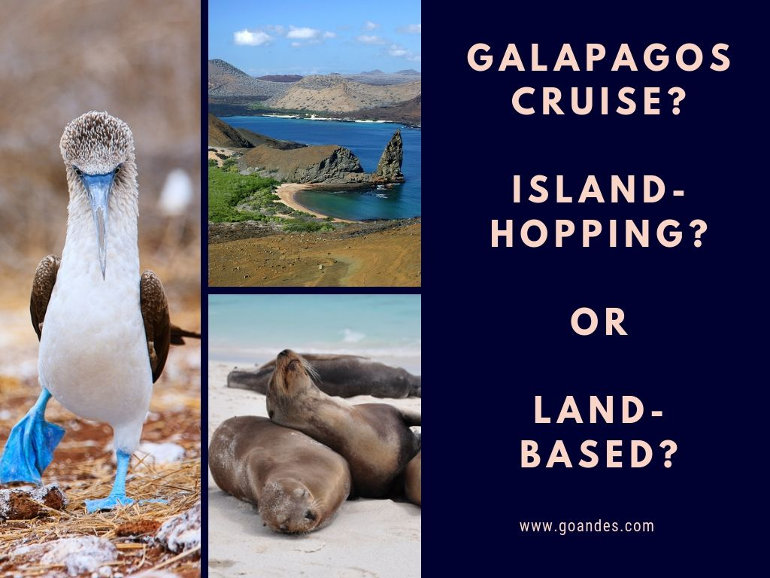 galapagos cruise island hopping or land based