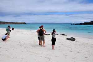 what is the best galapagos island to visit .gardner bay