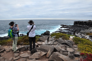 what is the best galapagos island to visit punta suarez2