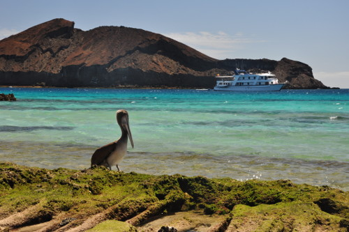 San Jose Yacht Galapagos Islands