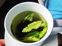 Nigel's Go Andes Peru Holiday Blog - Coca Tea